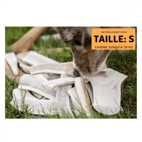 Bois de cerf pour chien tranché : Taille S