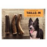 Bois de cerf pour chien entier : Taille M