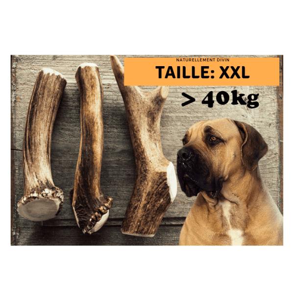Bois de cerf pour chien entier : Taille XXL