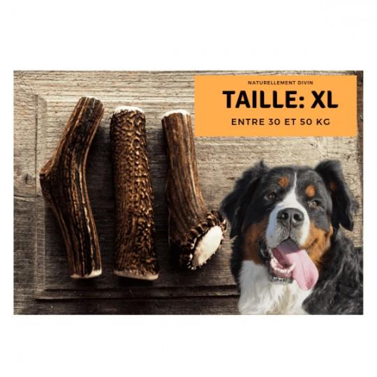 Bois de cerf pour chien entier : Taille XL