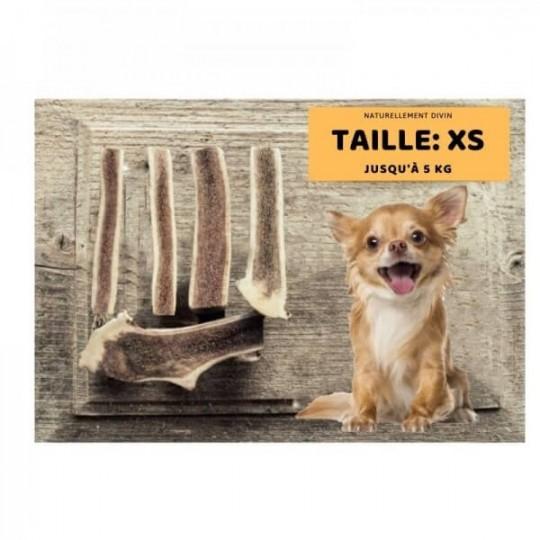 Bois de cerf pour chien tranché : Taille XS