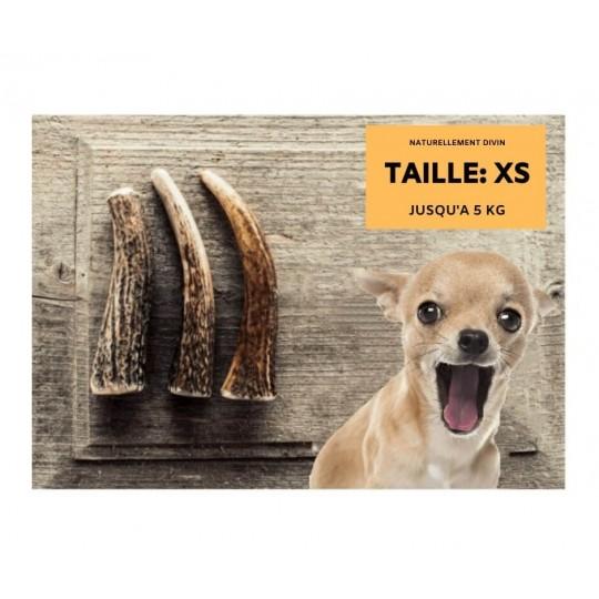 Bois de cerf pour chien entier  Taille XS