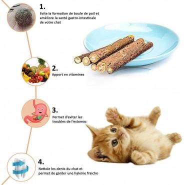 Herbe à chat : Matatabi