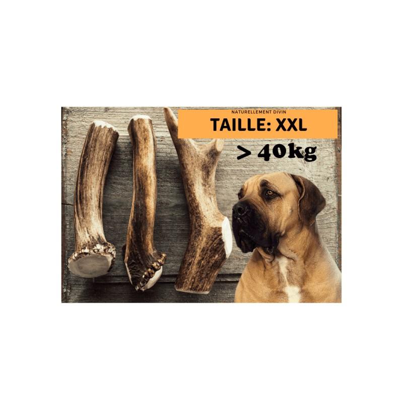 Bois de cerf pour chien entier : Taille XXXL