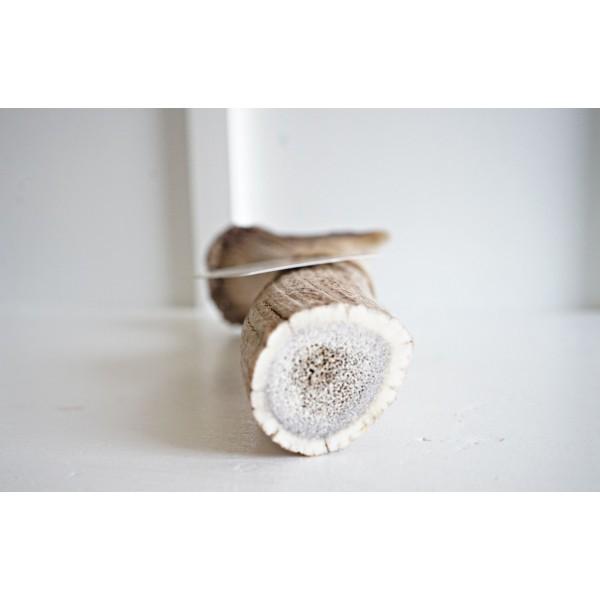 bois de cerf en poudre