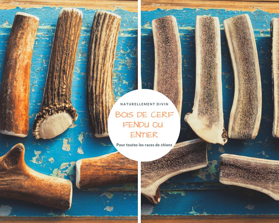bois de cerf fendus ou entier pour toutes les races de chien